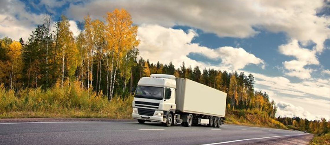 Temporary Driver Visas Needed to Ease Supply Chain Issues